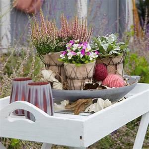Herbstdeko Für Terrasse : bloom 39 s balkon und terrasse deko und pflanztipps f r ~ Lizthompson.info Haus und Dekorationen