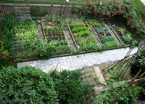 model vegetable garden layout north south