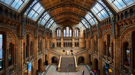 central hall nhm bing wallpaper