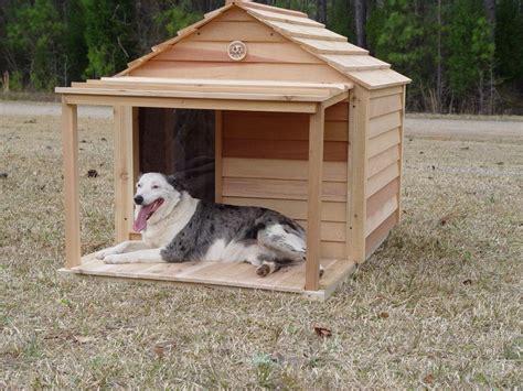 large dog house custom cedar dog house