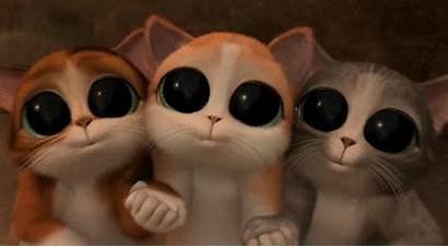 Gato Botas Animado Gifs Animados Piscando Um