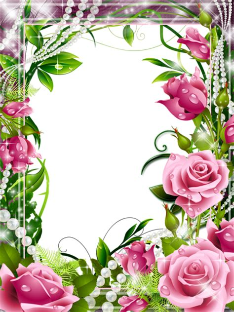 transparent png photo frame pink roses gallery yopriceville