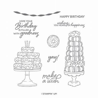 Birthday Goodness Cling Stampin Stamp Stamps June