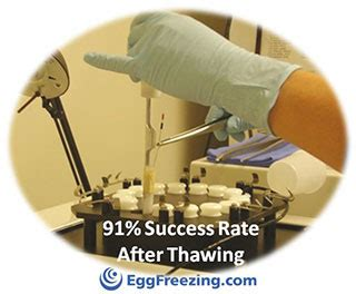Success Rates  Eggfreezingcom. Product Liability Insurance California. Bank Deals To Open Account How To Buy An Llc. Dove House Lafayette Co Health Insurance Faqs. Assisted Living Sunnyvale Beverly Hills Court. College For Fashion Merchandising. Home Security Systems No Monitoring. Placer County Jail Inmate Hayward High School. Tubal Ligation Healing Time Aaa Pittsford Ny