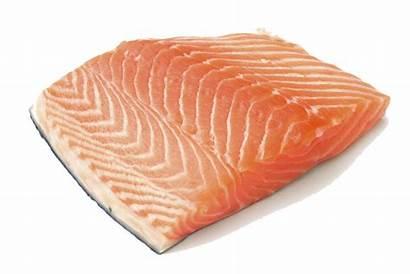 Fish Meat Clipart Freepngimg