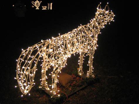 festival of silver lights at hubbard park