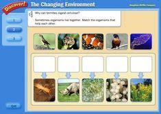 images  science animalsanimal adaptations