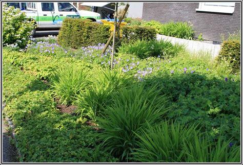 Garten Und Landschaftsbau Zuständige Bg by Garten Und Landschaftsbau Welche Bg Garten House Und