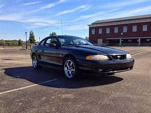 Daily Turismo: 5k: Stang Submission: 1994 Ford Mustang GT SN95