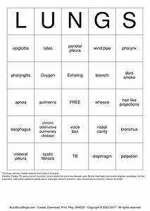 Respiratory System Bingo Cards To Download  Print And