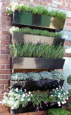 1000 ideas about herb wall on herbs garden