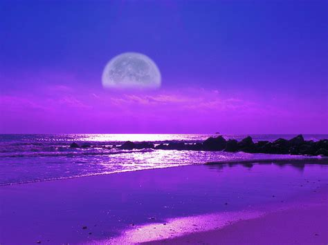 Moonlite Gardens by Quot Moonlight Beach Quot Flickr Photo Sharing
