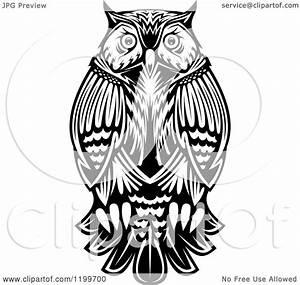 Clipart of a Chubby Black and White Owl - Royalty Free ...