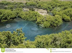 Blue, Water, River, In, Green, Forest, Landscape, Stock, Photo