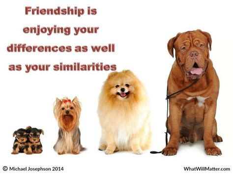 Friendship: Embracing Differences - What Will Matter | Cat ...
