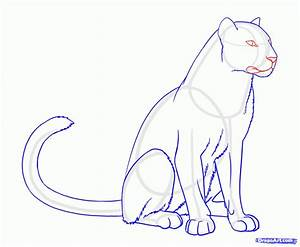 How To Draw A Panther - Drawing Pencil