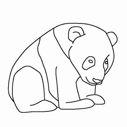 Panda Coloring Pages Giant Bear Cartoon Printable