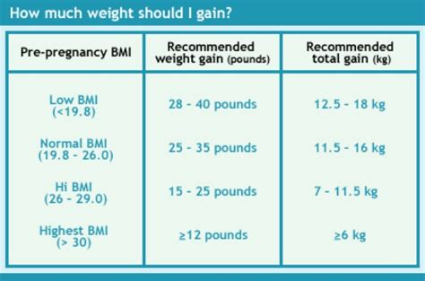 diary   fit mommy normal pregnancy weight gain breakdown