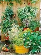 Tundra Monkey Gardening Container Garden Design