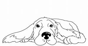 How To Draw A Cocker Spaniel Fun Drawing Lessons For