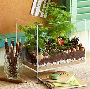 Aquarium Dekorieren Ideen : wie baue ich ein terrarium pflanzen und passende glasgef e terrarium aquarium pinterest ~ Bigdaddyawards.com Haus und Dekorationen