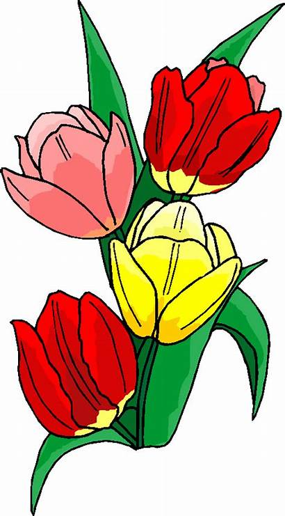 Clipart Flowers Flower Spring Microsoft Cliparts Clip