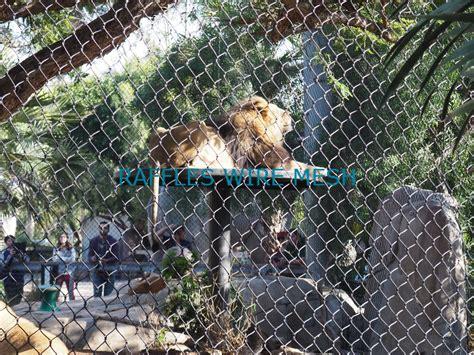 netting mesh enclosure zoo wire aviary animal banner steel stainless bird rope flexible raffles fence monkey