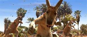 The gallery for --> Kangaroo Jack 2
