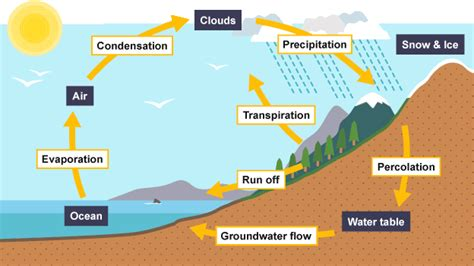 Water Cycle Diagram Earthguide by Water Scarcity Year 7 Hass Geography Libguides At Hale