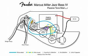 Fender Marcus Miller Jazz Bass Wiring Diagram And In