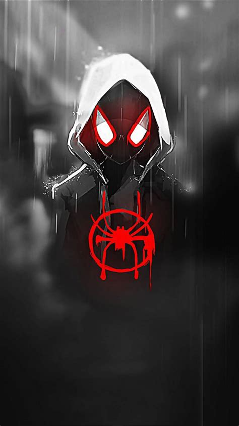 spider man wallpaper  theoddout    zedge