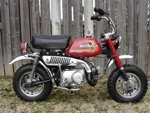 Mini Bike  Honda And Monkey On Pinterest