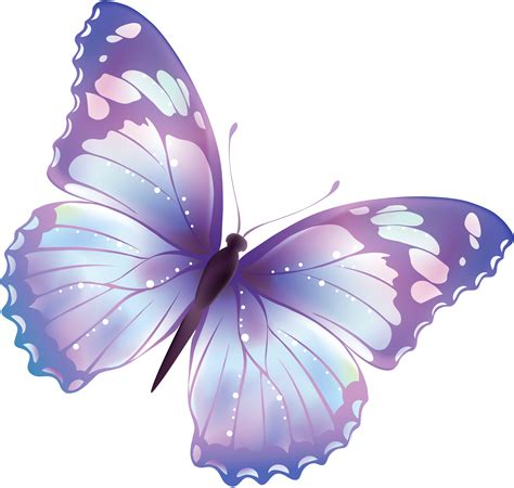 Large Transparent Butterfly Png Clipart Gallery