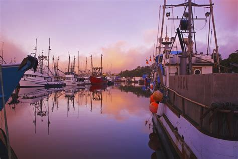 Office Supplies Newport Oregon by Posterazzi Through The Morning Fog And Fishing