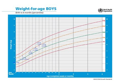 Fun Times And Growth Charts Fatherhood For Geeks