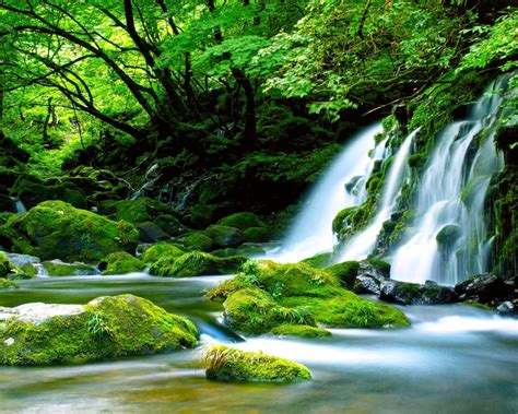 green waterfall river rocks covered  green moss forest