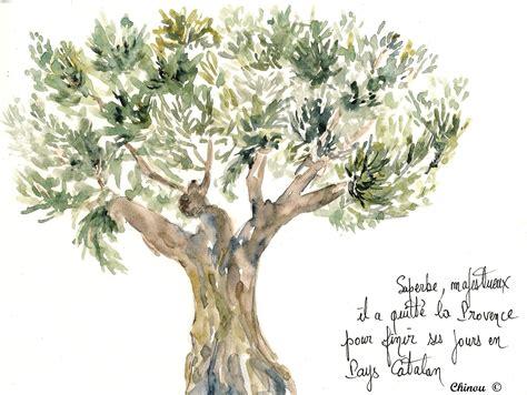 la cuisine d olivier pays catalan toutes les photos sur pays catalan