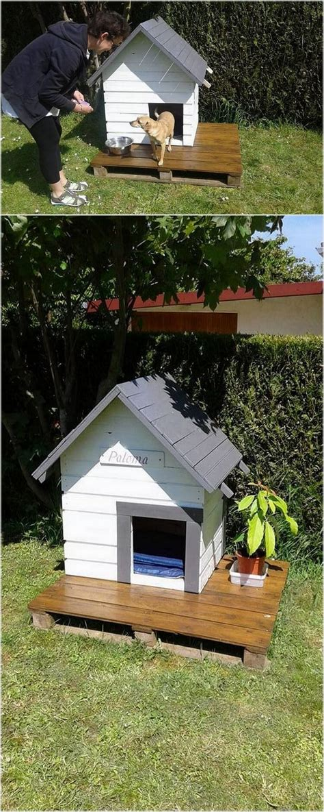 ideas  dog houses  pinterest pet houses