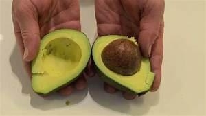 Avocado Pflanze Richtig Schneiden :  ~ Lizthompson.info Haus und Dekorationen