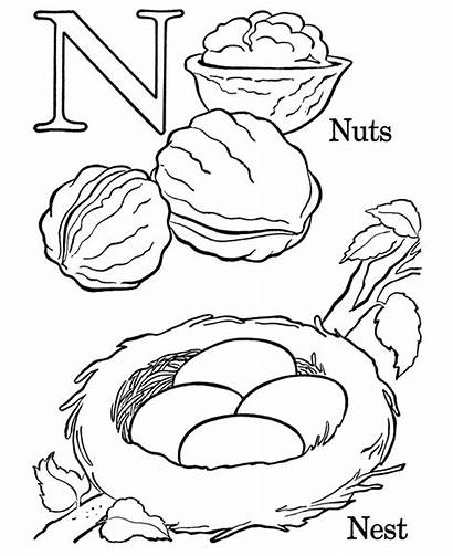 Coloring Letter Pages Nuts