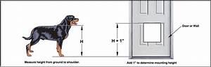 Dog flap door gallery doors design modern for Smart dog door for wall