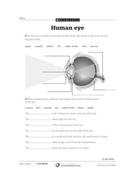 Label Eye Diagram Ks2 by Diagram Of The Human Eye Primary Ks2 Teaching Resource