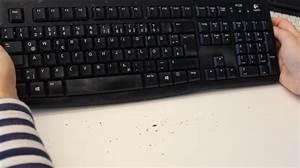 Maus Sauber Machen : laptop tastatur reinigen so geht es richtig ~ Markanthonyermac.com Haus und Dekorationen