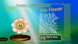 Fire Flower Smashpedia Fandom Powered By Wikia