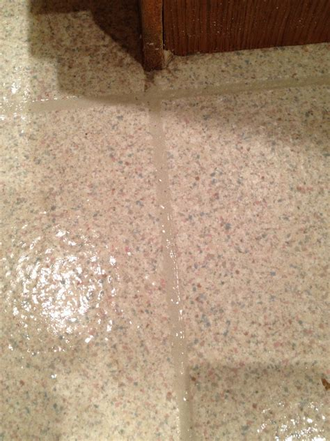 linoleum flooring diy the diy guinea pig deep clean your linoleum