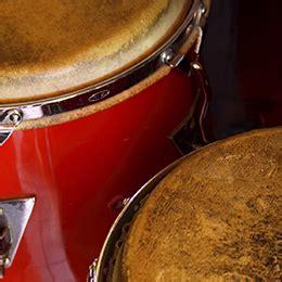 latin percussion ableton