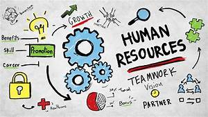 Human Resources 101: Intro to Human Resources Course ...