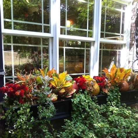 window boxes for fall front of the house ideas window box and gardens
