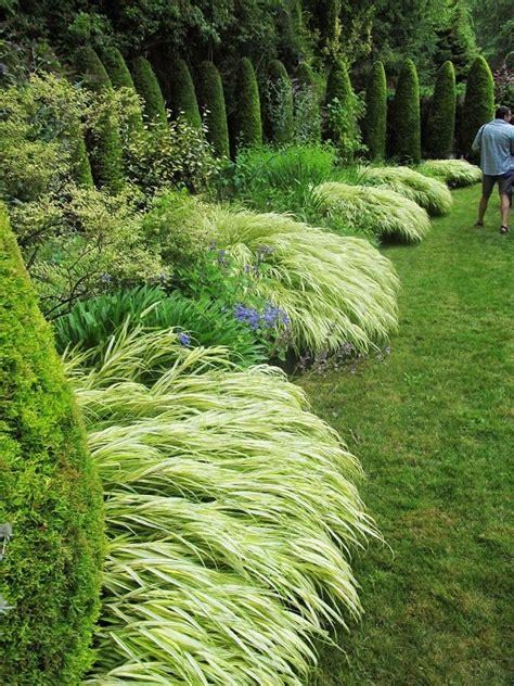 border grasses for landscaping 1639 best ornamental grass perennial meadows images on pinterest garden ideas landscaping