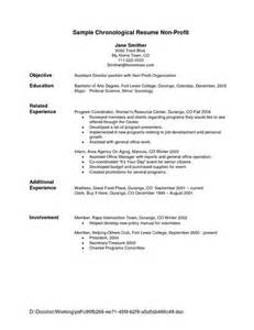 chronological resume template sle 25 best ideas about chronological resume template on resume format exles